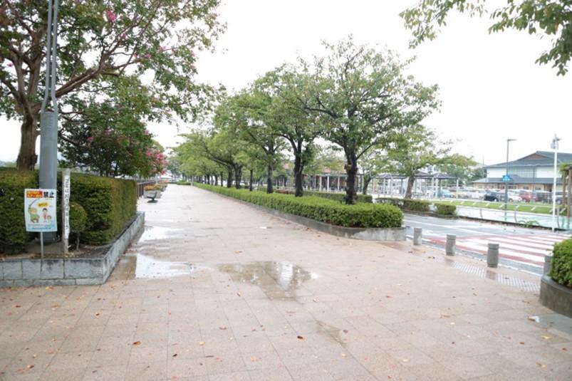 静岡県藤枝市蓮華寺池公園前の道路