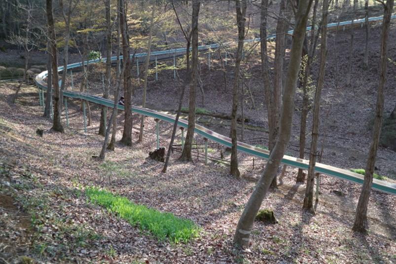 関東最長となる青梅花木園のローラースライダー