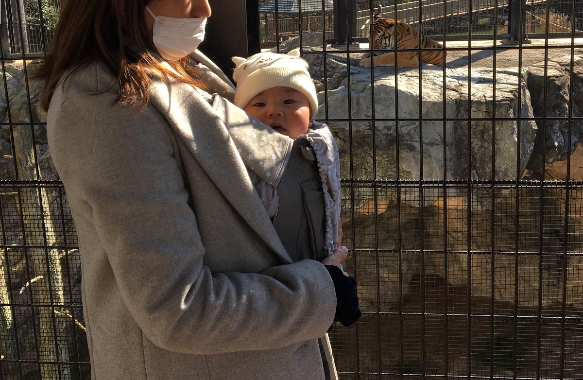 ワンオペ二人目育児 お出かけの必需品 抱っこ紐 エルゴ あると便利な育児グッズ