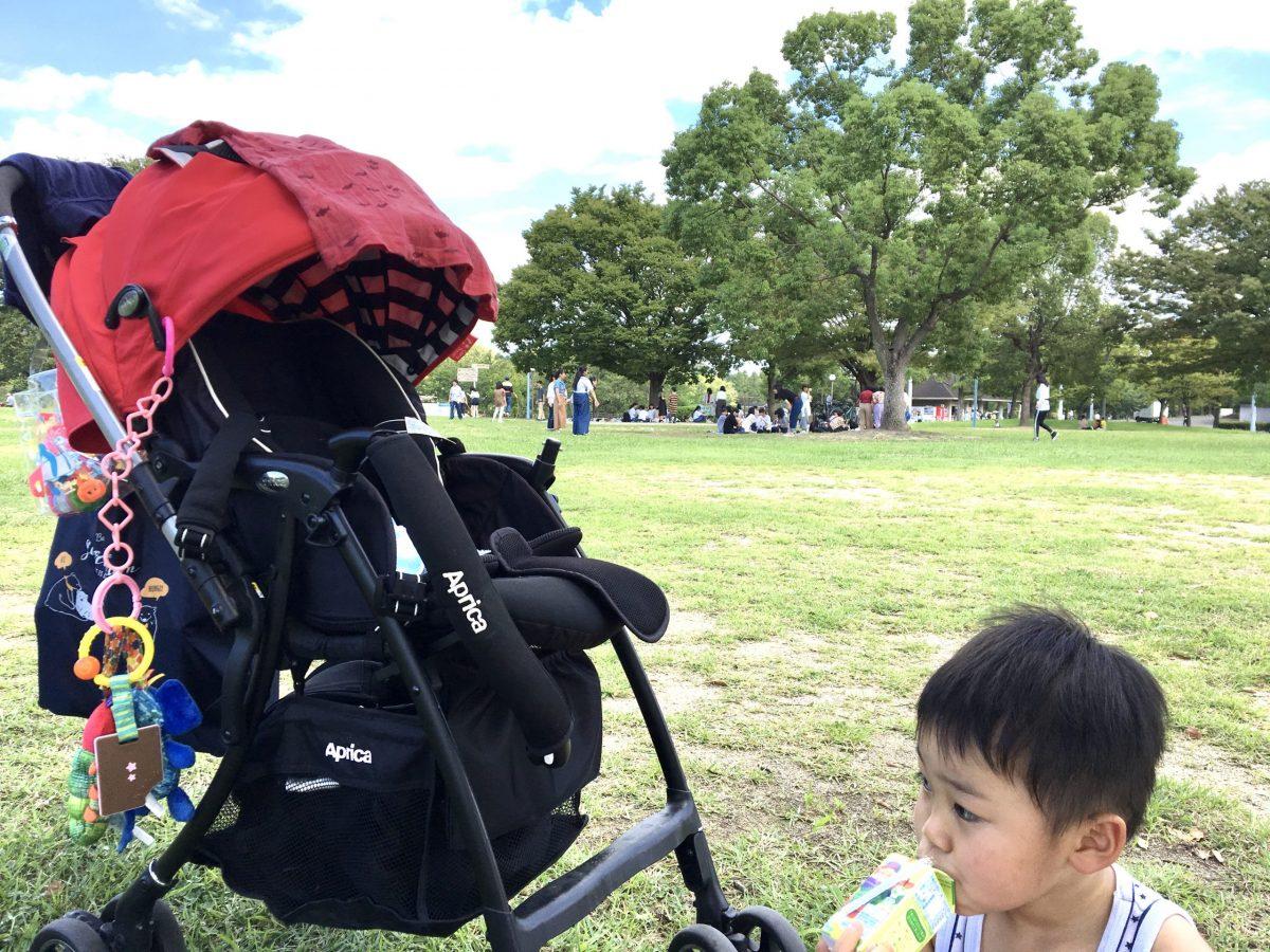 ワンオペ二人目育児の必需品 お出かけ 公園 ベビーカー アップリカ 3歳1歳 兄妹 公園